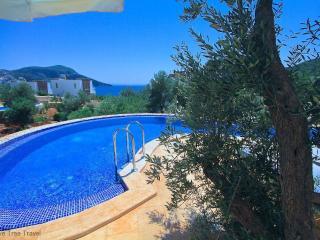 Likya View Villa - Poseidon - - Kalkan vacation rentals