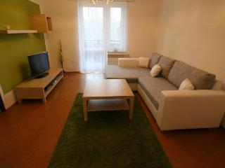 Bright Apartment in Lipno nad Vltavou with Internet Access, sleeps 4 - Lipno nad Vltavou vacation rentals