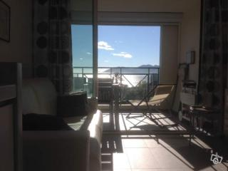 Appartement F2 Cannes vue mer, piscine , parking - Cannes vacation rentals