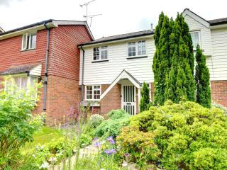 The Lanes Cottage - Tenterden vacation rentals
