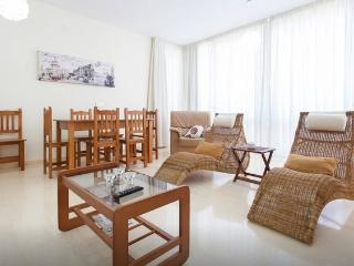 Apartment in Benidorm - Benidorm vacation rentals