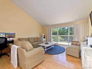 1719 Kennington Rd - Encinitas vacation rentals