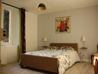 Appolusbratadis Appartement 110M2 1 a 4 personnes - Plombieres les Bains vacation rentals
