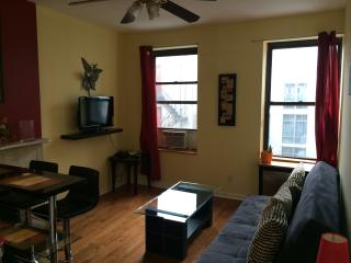 One Bedroom Apartment - West 51st - New York City vacation rentals