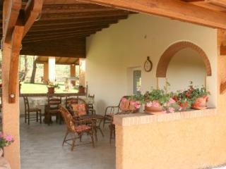 AGRITURISMO MENCHETTI - appartamento IL GRANAIO - Foiano Della Chiana vacation rentals