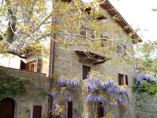 Villa,piscina,6p/l,Firenze,collina,panoramica - Leccio vacation rentals