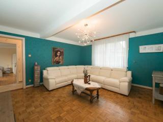 Charming apartment near Strasbourg - Bischwiller vacation rentals