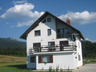 HOUSE PLJEŠEVICA - Plitvica vacation rentals