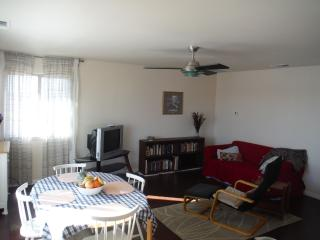 Bright Furnished Apt. in Quiet Upscale Residential - Big Bend Country vacation rentals