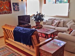 Charming Moss Beach Oceanview 1 BR - Moss Beach vacation rentals