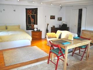 a safari studio in REAL Palo Alto - San Francisco Bay Area vacation rentals