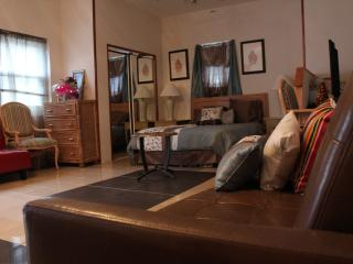 Lovely 1 bedroom Condo in Warwick - Warwick vacation rentals