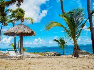 Nov & Dec last minute sale! Beachfront walk out! - Christiansted vacation rentals