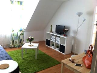 Central place in Essen - Bispingen vacation rentals