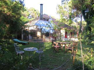 Charming Villa in Quinta da Marinha, Cascais - Cascais vacation rentals
