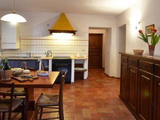 AGRITURISMO BELLAVISTA 6posti - Radicondoli vacation rentals
