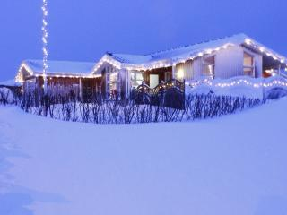 LUXURY HOUSE, PEACEFUL NATURE - Suoavik vacation rentals
