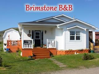 Brimstone B and B / Efficiency Unit - Fogo Island vacation rentals