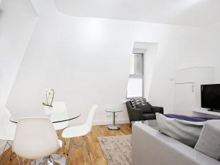76. 2BR MODERN FLAT - SOHO - COVENT GARDEN - London vacation rentals