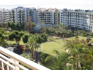 Apartamento Tulipa - Funchal vacation rentals
