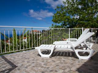 Relax conforto e Elegancia - Arco da Calheta vacation rentals