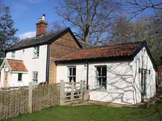 3 bedroom Cottage with Internet Access in Harleston - Harleston vacation rentals