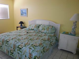 Nice 2 bedroom Condo in Islamorada - Islamorada vacation rentals