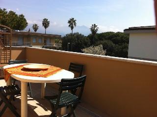 Apartment BATTIGIA, luxurious, close to beach - Marina Di Massa vacation rentals