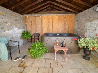 ~OUTDOOR HOT TUB~WALK TO TOWN -WI-FI~PETS - Hot Springs vacation rentals