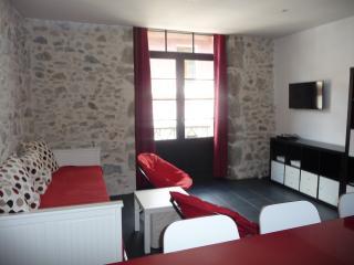 T3 Sainte Claire - Annecy vacation rentals