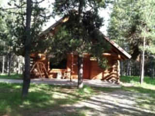 DODGE INN ~ 1 BEDROOM WITH LOFT - Image 1 - Island Park - rentals