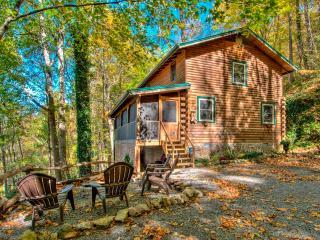 Angel Puppy Cabin - Maggie Valley vacation rentals