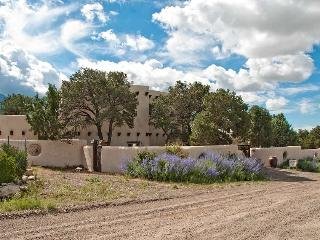 Exquisite 3BD/3BA Custom Home with Amazing Views! - Crestone vacation rentals