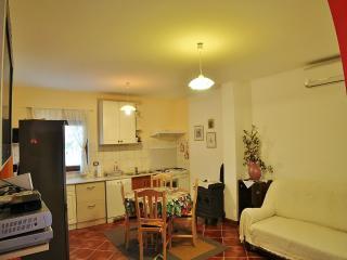Perfect 1 bedroom Apartment in Liznjan - Liznjan vacation rentals