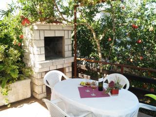 Dionis Domus - Vela Luka vacation rentals