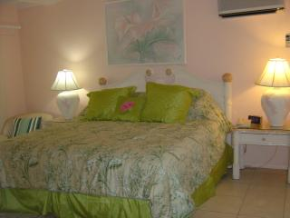 St James's Club Villa #473 - Saint Paul vacation rentals