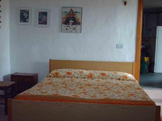 Gargano 2-4 beds apartment in a villa 300 euro - San Menaio vacation rentals