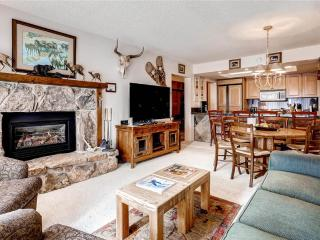 Bronze Tree 207 - Steamboat Springs vacation rentals