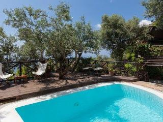 Villa Gli Ulivi Positano - Positano vacation rentals