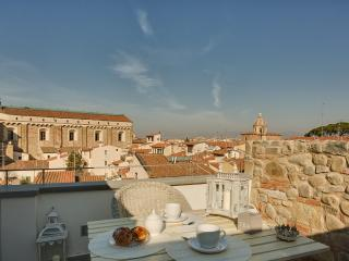 Beautiful Terrace Serragli - Florence vacation rentals