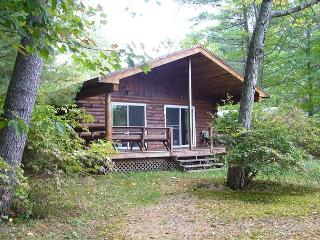 BIG SQUAM LAKE WATERFRONT: LOG CABIN - Center Harbor vacation rentals