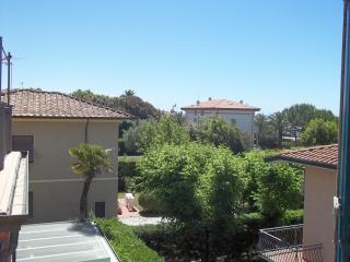 FORTE DEI MARMI MARE FLAT - Montaione vacation rentals