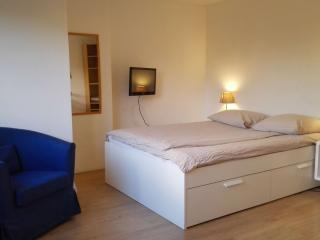 Just Stay - Spacious Apartment Heemskerkstraat3 - Rotterdam vacation rentals