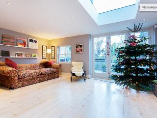 4 bedroom townhouse, Middleton Road, Dalston - Woodford Green vacation rentals