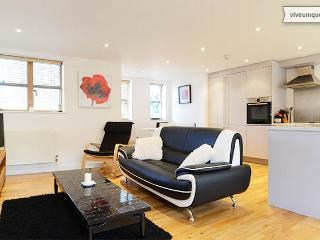 Open-plan 2 bed 2 bath apartment, Lacy Road, Putney - London vacation rentals