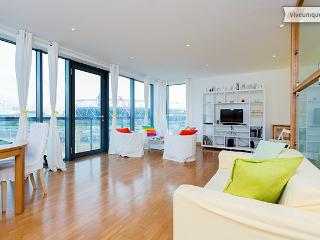 2 bed overlooking Olympic Stadium, Omega Works, Stratford - Woodford Green vacation rentals
