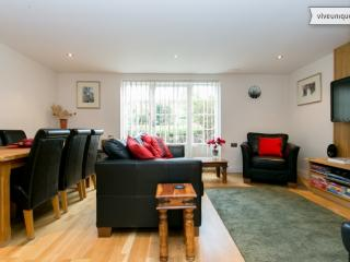 Modern 2 bed apartment on Compton Road, Islington - London vacation rentals