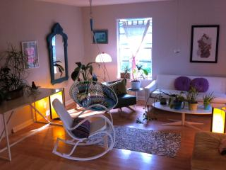 quiet, lovely south austin bungalow near s. lamar - Texas Hill Country vacation rentals
