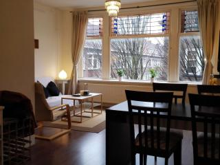 Just Stay - Spacious Apartment Heemskerkstraat2 - Rotterdam vacation rentals