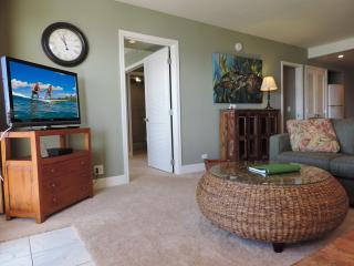 Sunny Condo with Internet Access and Dishwasher - Poipu vacation rentals